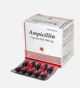 Ampicilin (Penicillin)